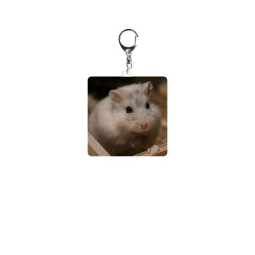 飼っているハムスターの写真をプリントしたオリジナルキーホルダー