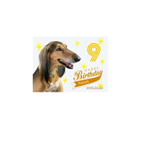 愛犬のバースデーデザインのオリジナルブランケット