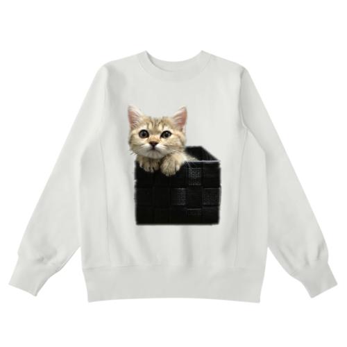 子猫の写真をプリントしたオリジナルスウェット
