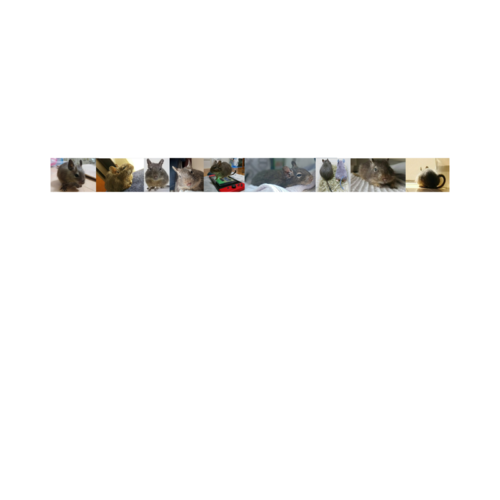 ペットの写真をプリントしたオリジナルマスキングテープ